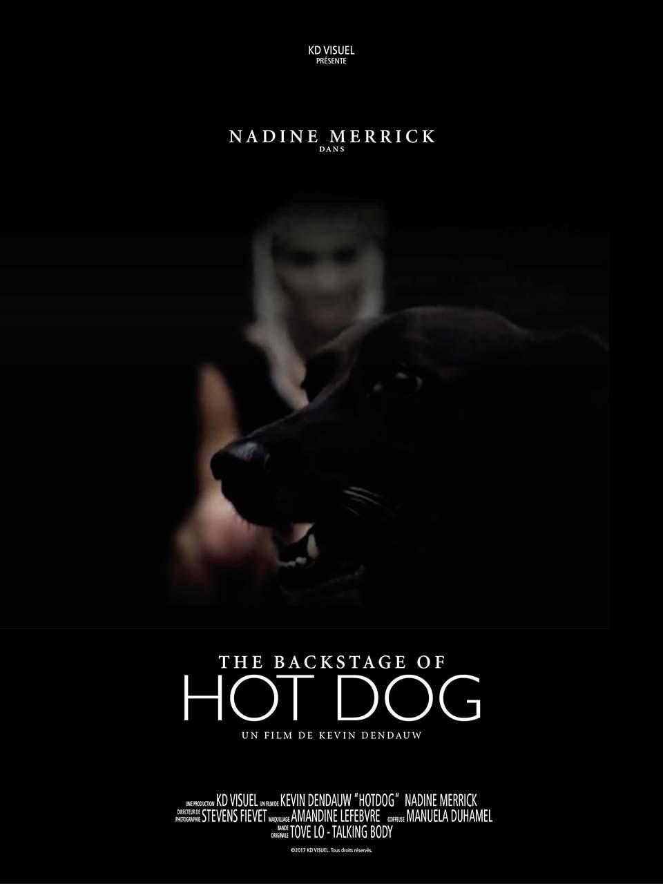 Affiche HotDog vidéaste Lille KD Visuel